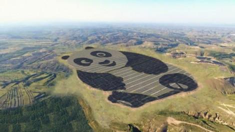 Panda-Green-Energy-889x500-e1499156081995